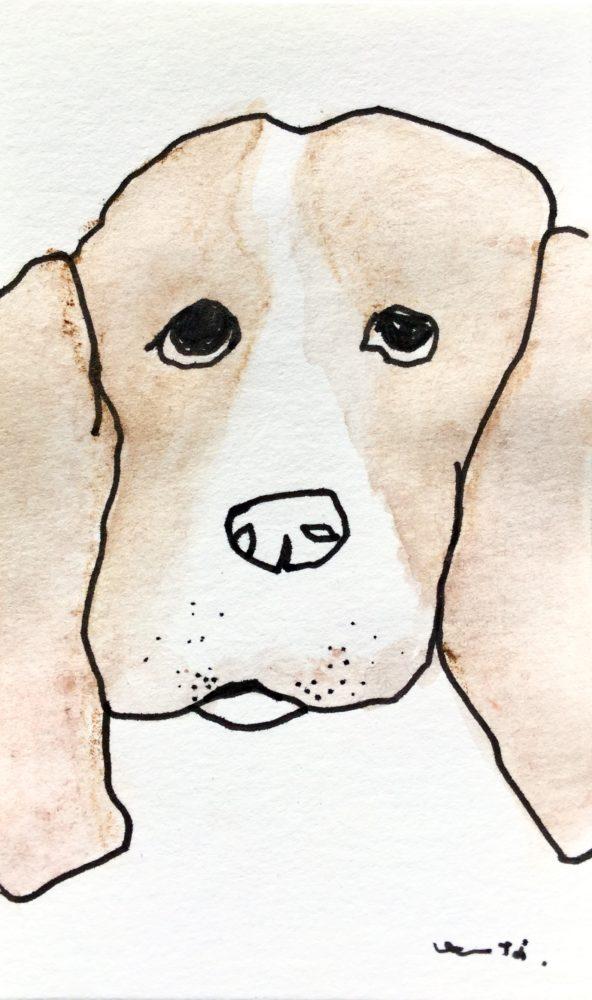 ビーグル犬かな